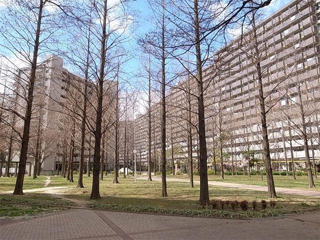 武庫川団地の写真(No.5)