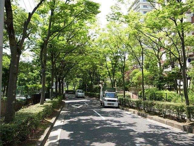 北緑丘団地の写真(No.11)