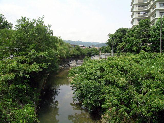 北緑丘団地の写真(No.12)