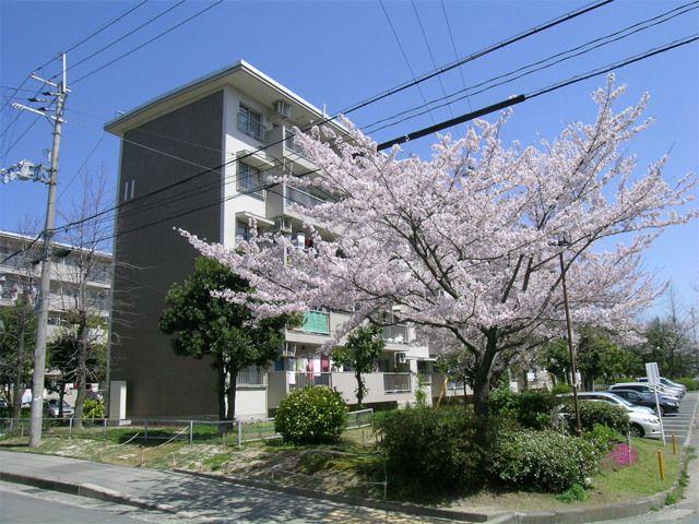 粟生団地の写真(No.3)