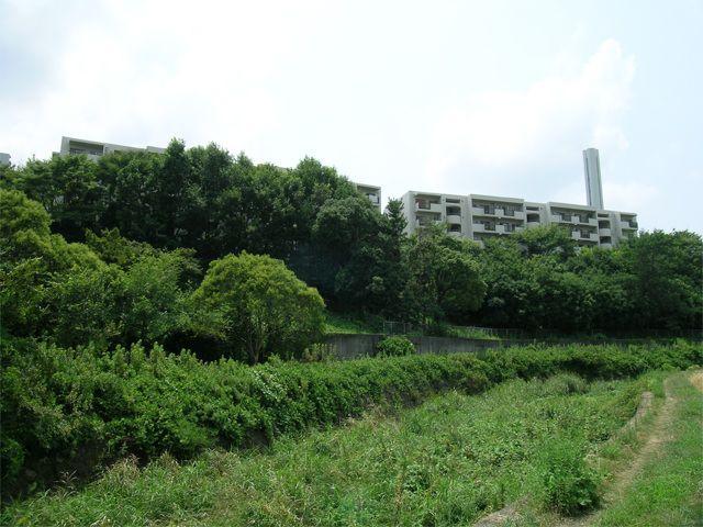 粟生団地の写真(No.15)